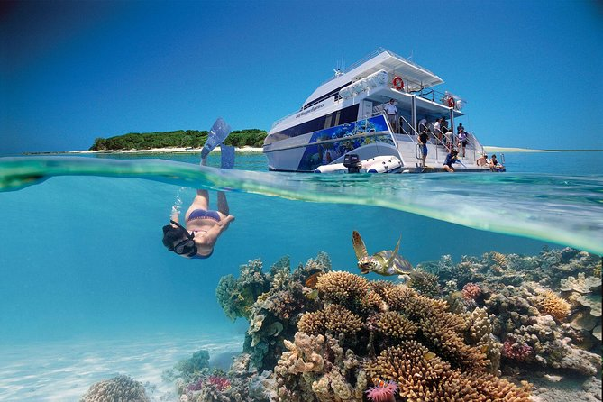 3-Day Southern Great Barrier Reef Tour Including Lady Musgrave Island - Accommodation QLD