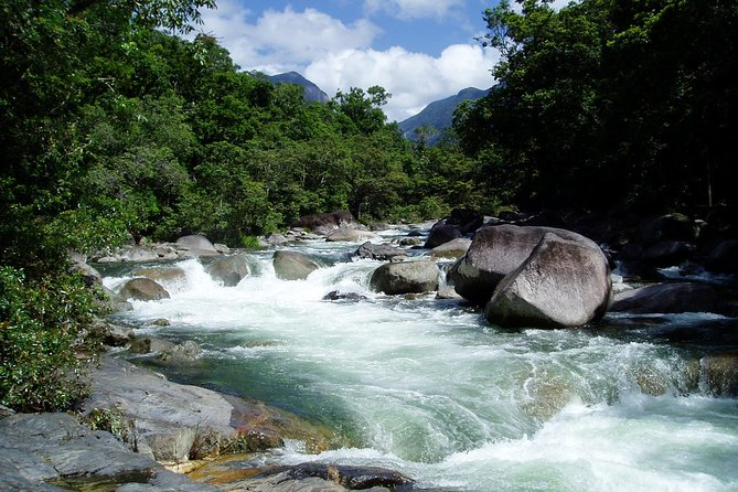 Daintree Rainforest Cape Tribulation Mossman Gorge in a day - Accommodation QLD