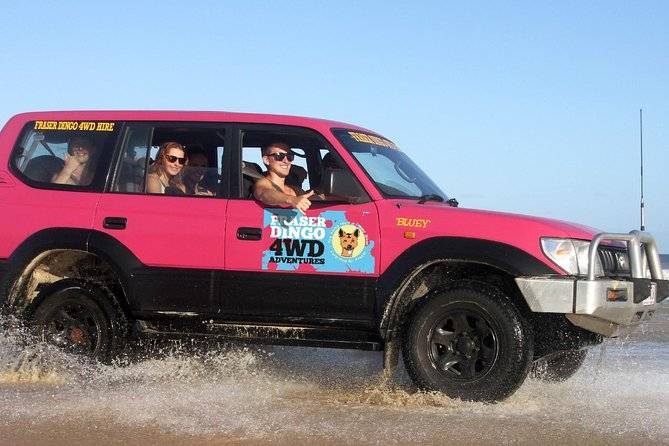 2-Day Fraser Island 4WD Tag-Along Tour at Beach House from Hervey Bay - Accommodation QLD