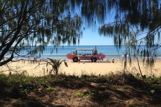 1770 Coastline Tour by LARC Amphibious Vehicle Including Picnic Lunch - Accommodation QLD
