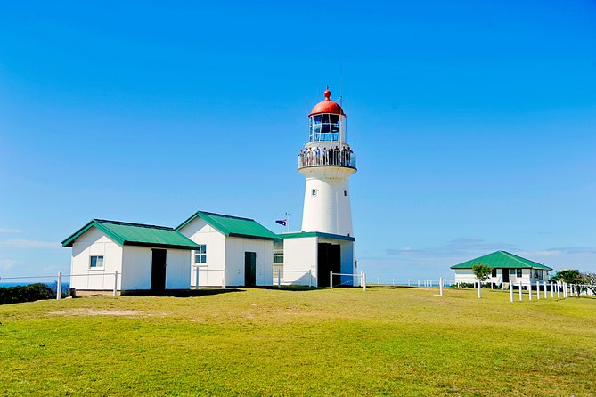 Full-Day 1770 Tour by LARC Amphibious Vehicle Including Sandboarding and Bustard Head Lightstation - Accommodation QLD