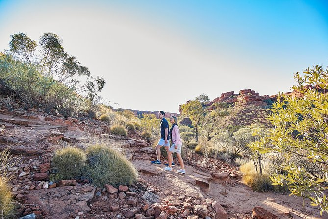 Kings Canyon Guided Rim Walk - Accommodation QLD