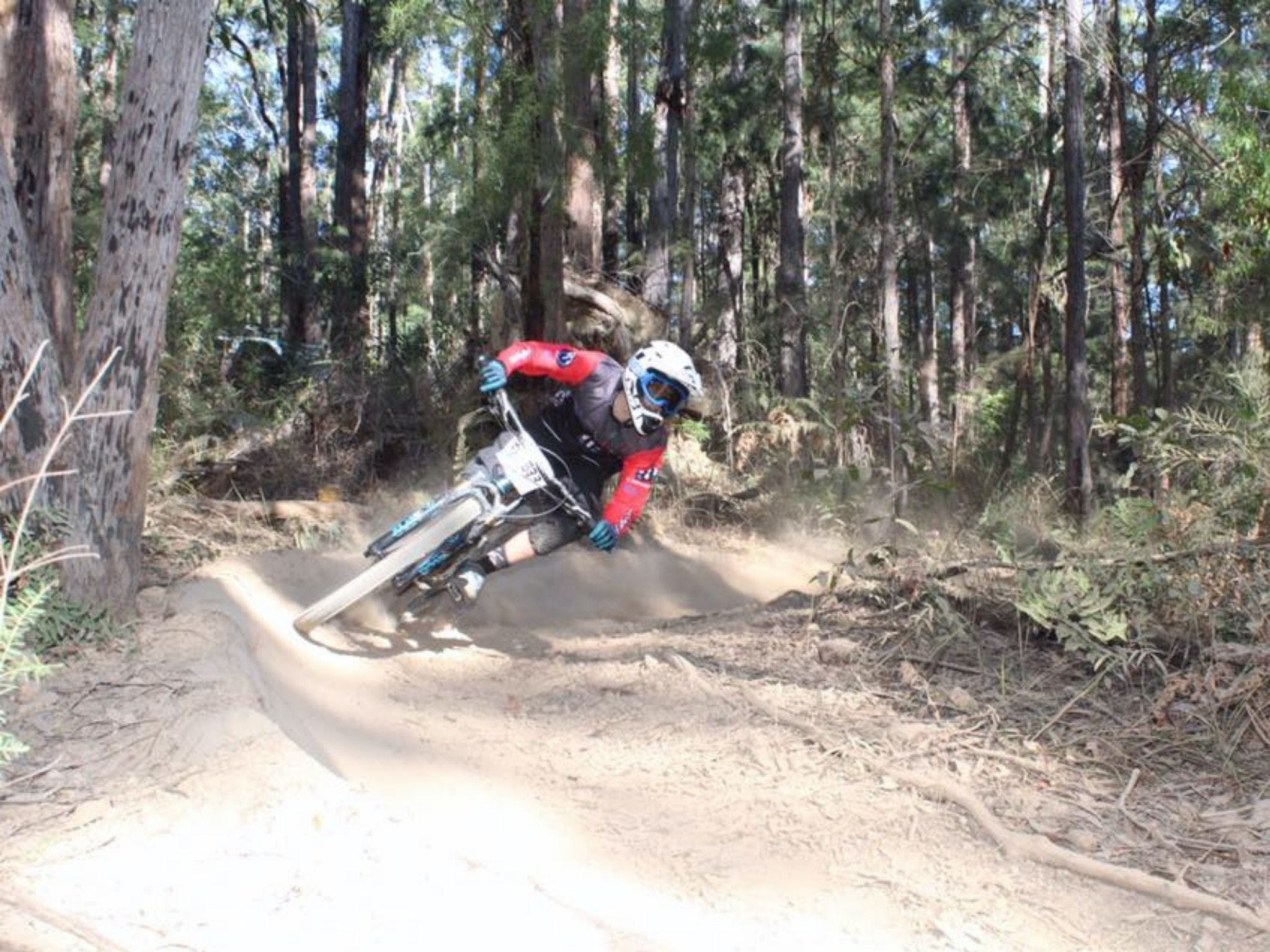 Jolly Nose Mountain Bike Park - Accommodation QLD