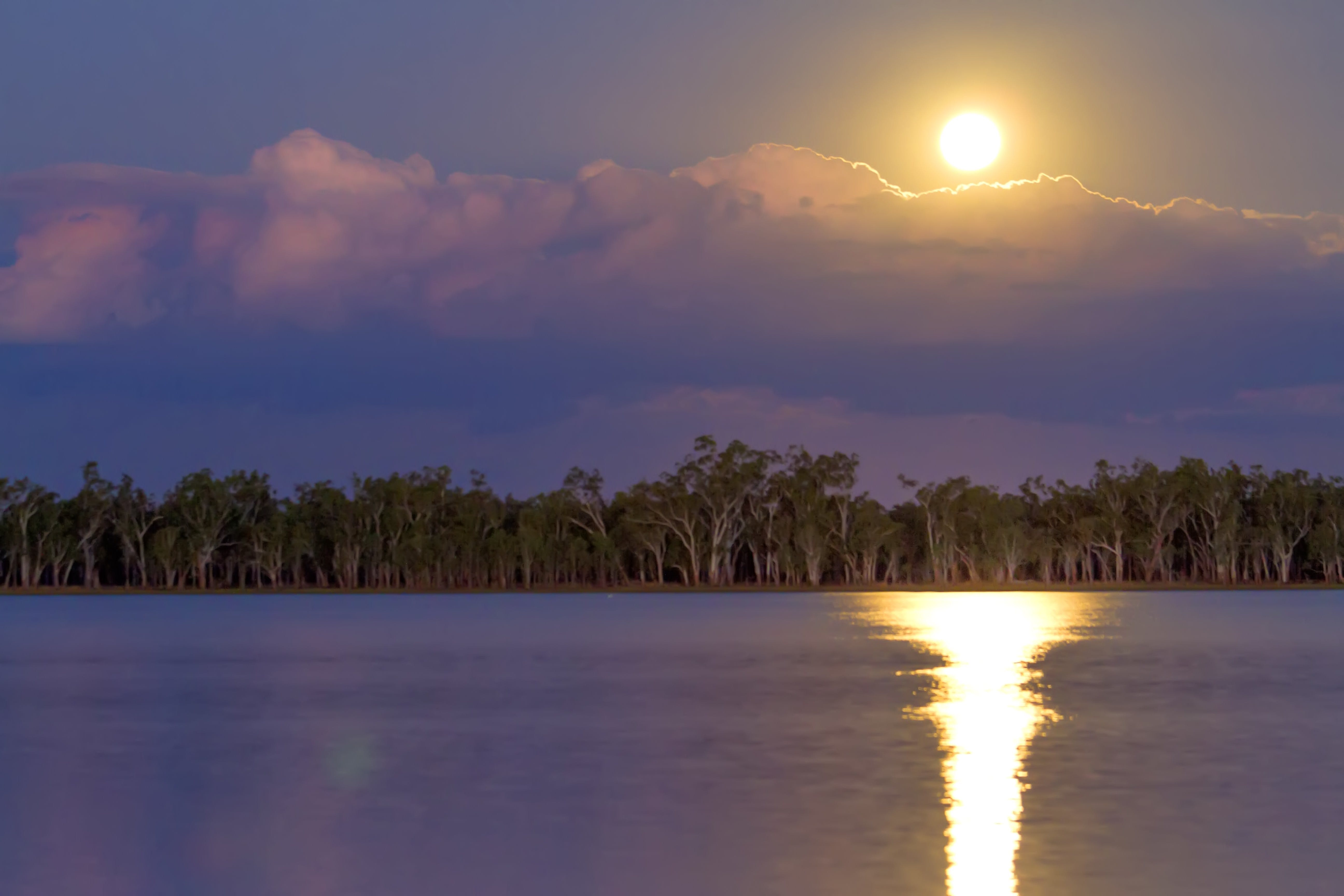 Lake Broadwater Conservation Park - Accommodation QLD