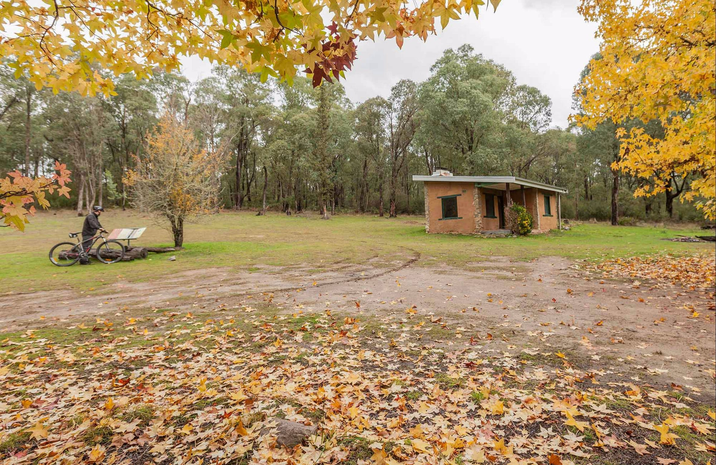 Major Clews Hut Walking Track - Accommodation QLD