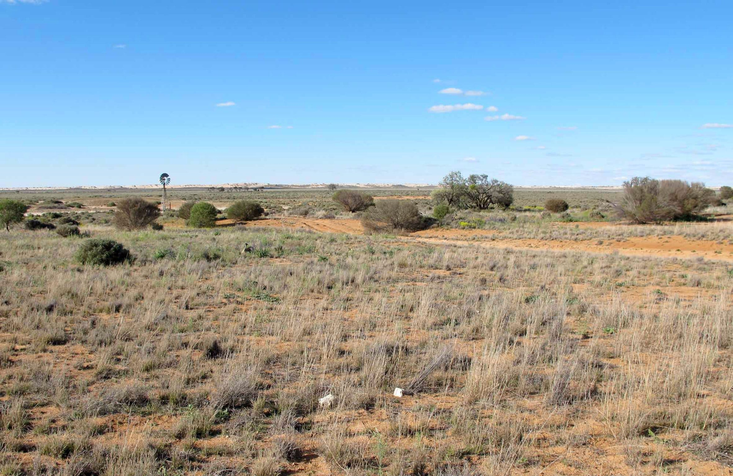Mungo Self-guided Drive Tour - Accommodation QLD