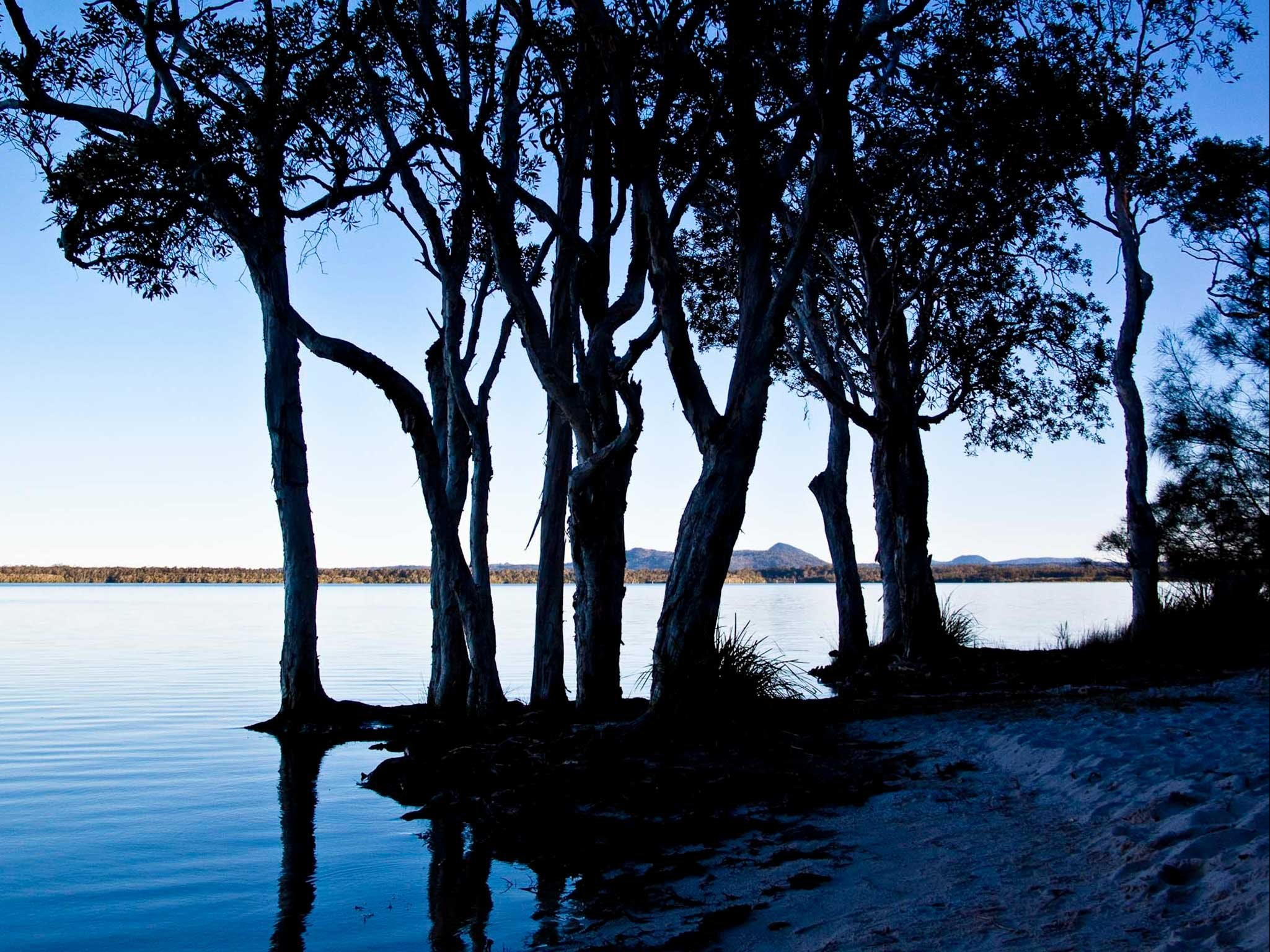 Boreen Point - Accommodation QLD