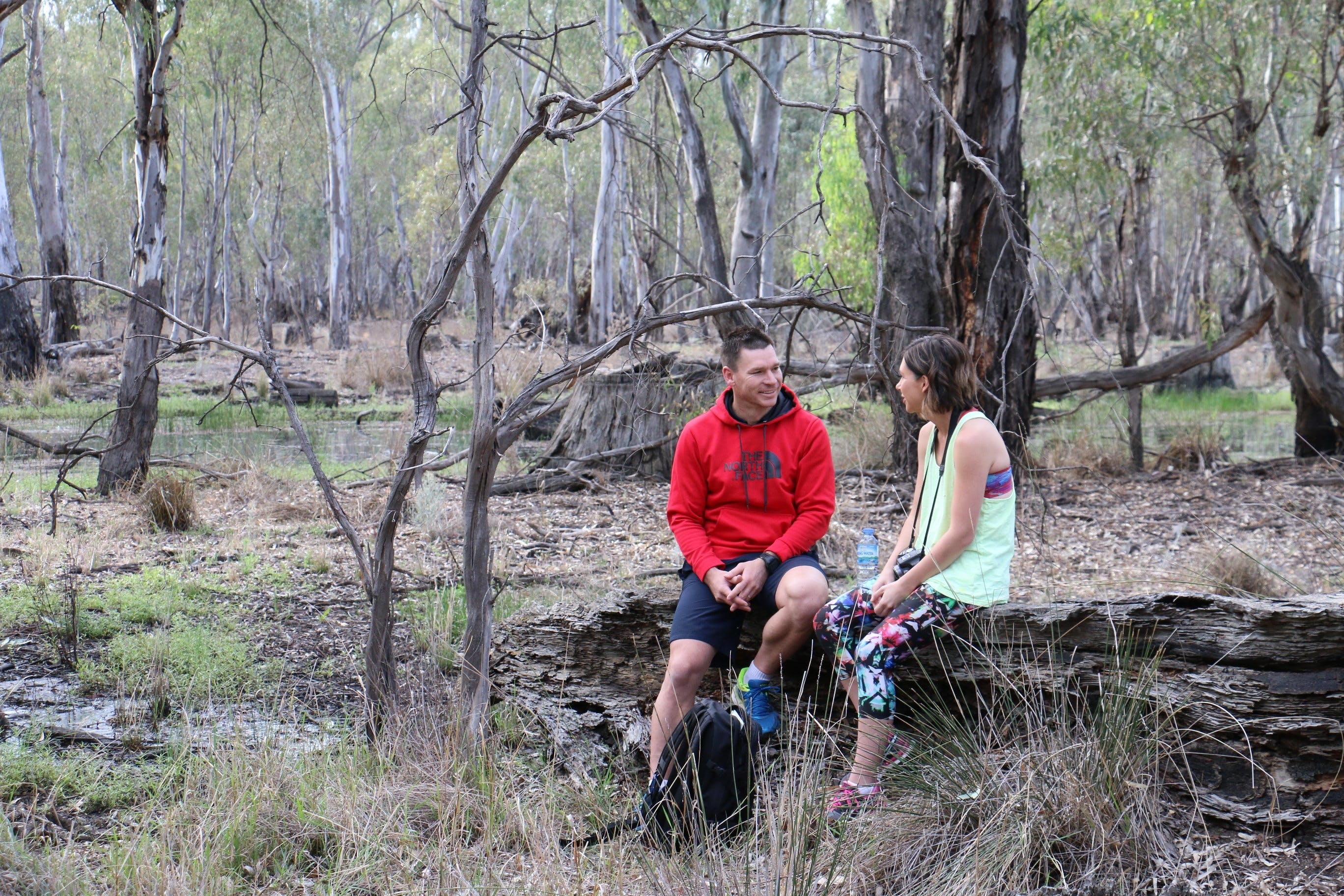 Gunbower Island Forest Drive - Accommodation QLD