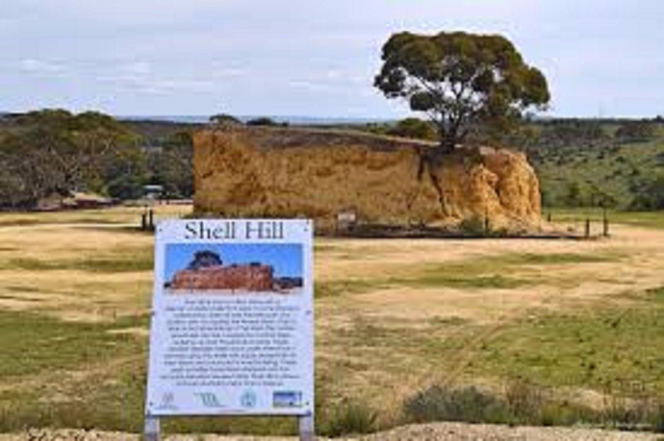 Shell Hill Reserve - Accommodation QLD