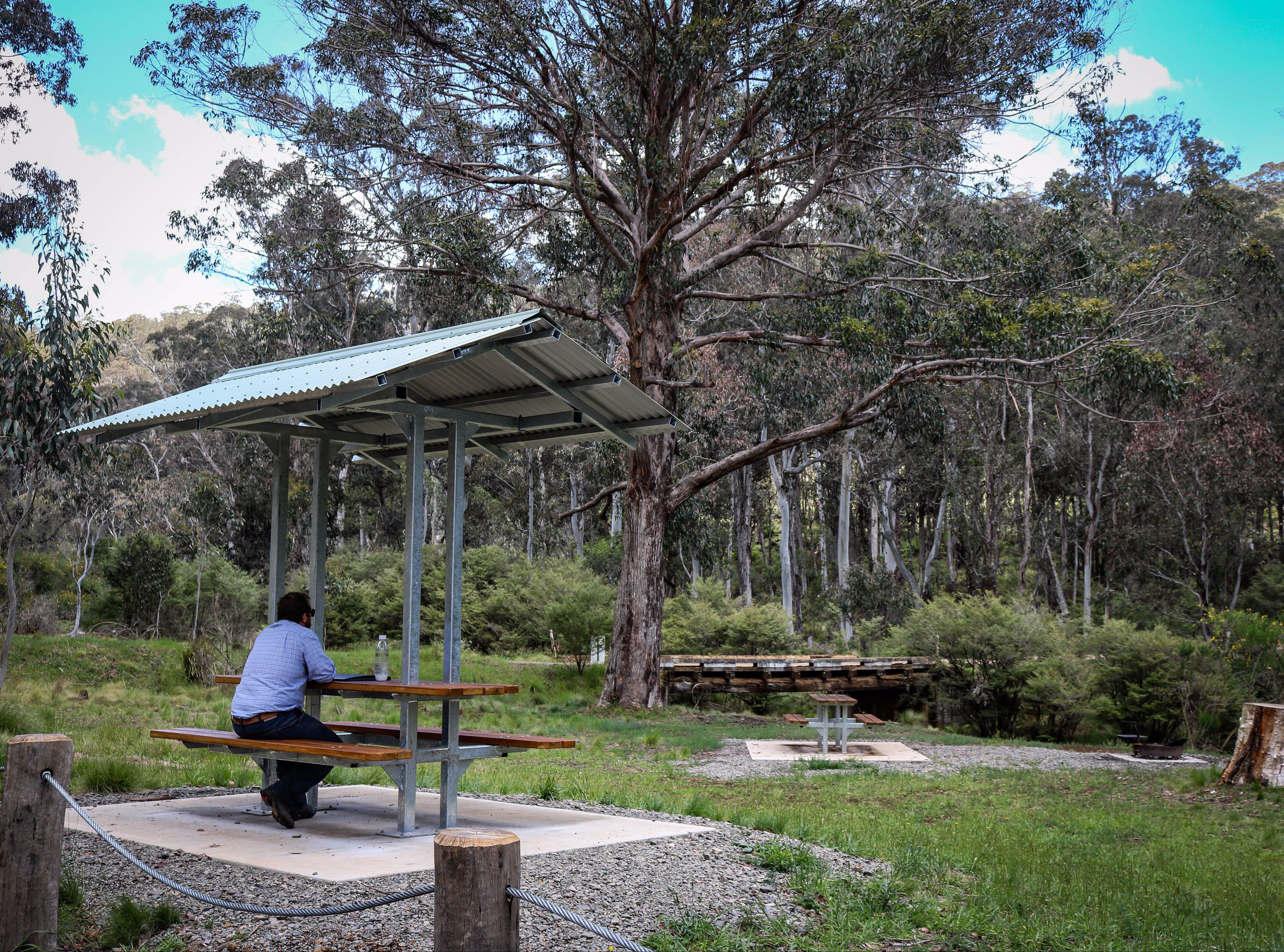 Barrington Tops State Forest - Accommodation QLD