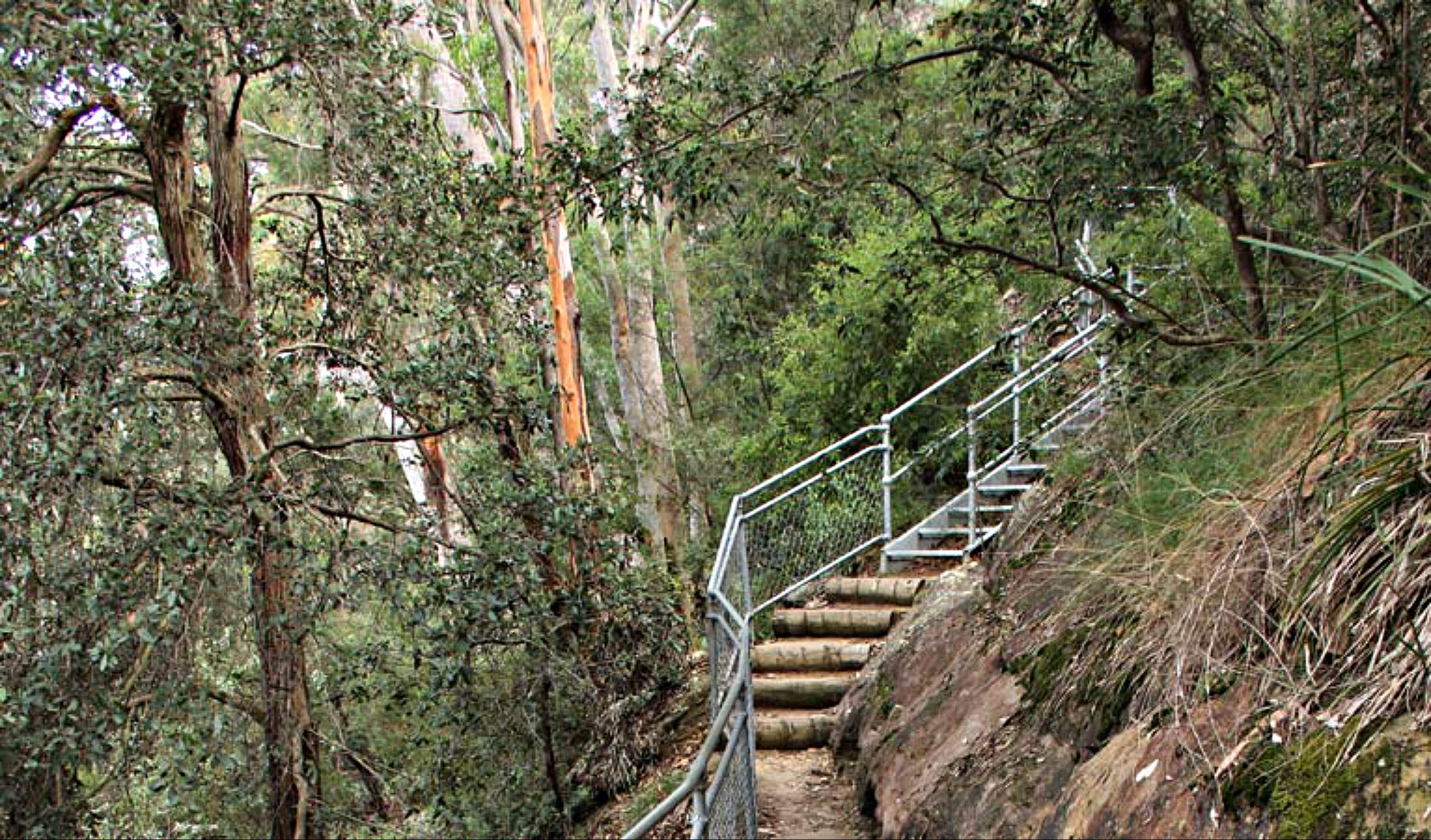 Caleys Lookout Track - Accommodation QLD