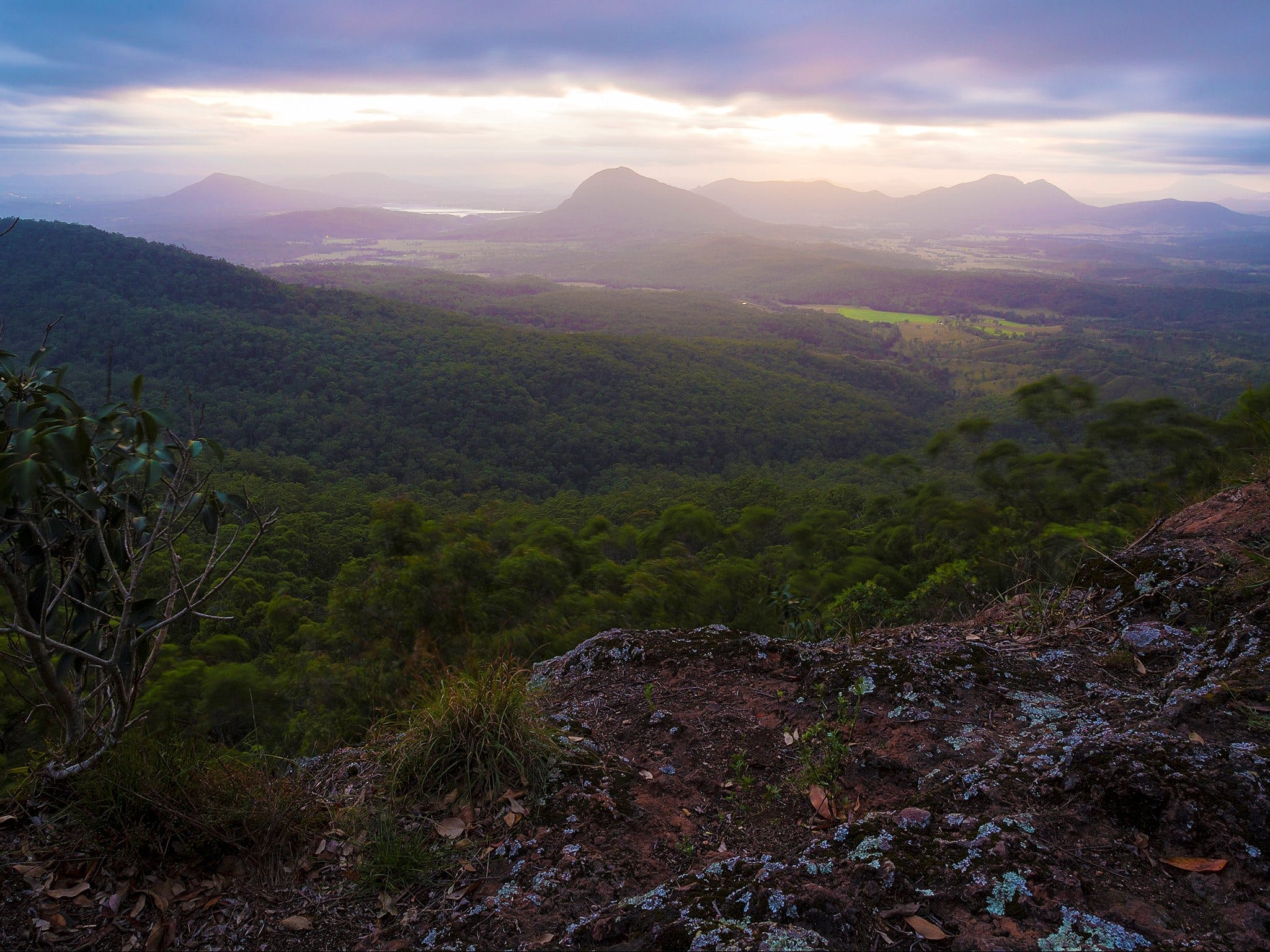 Cunninghams Gap and Spicers Gap Main Range National Park - Accommodation QLD