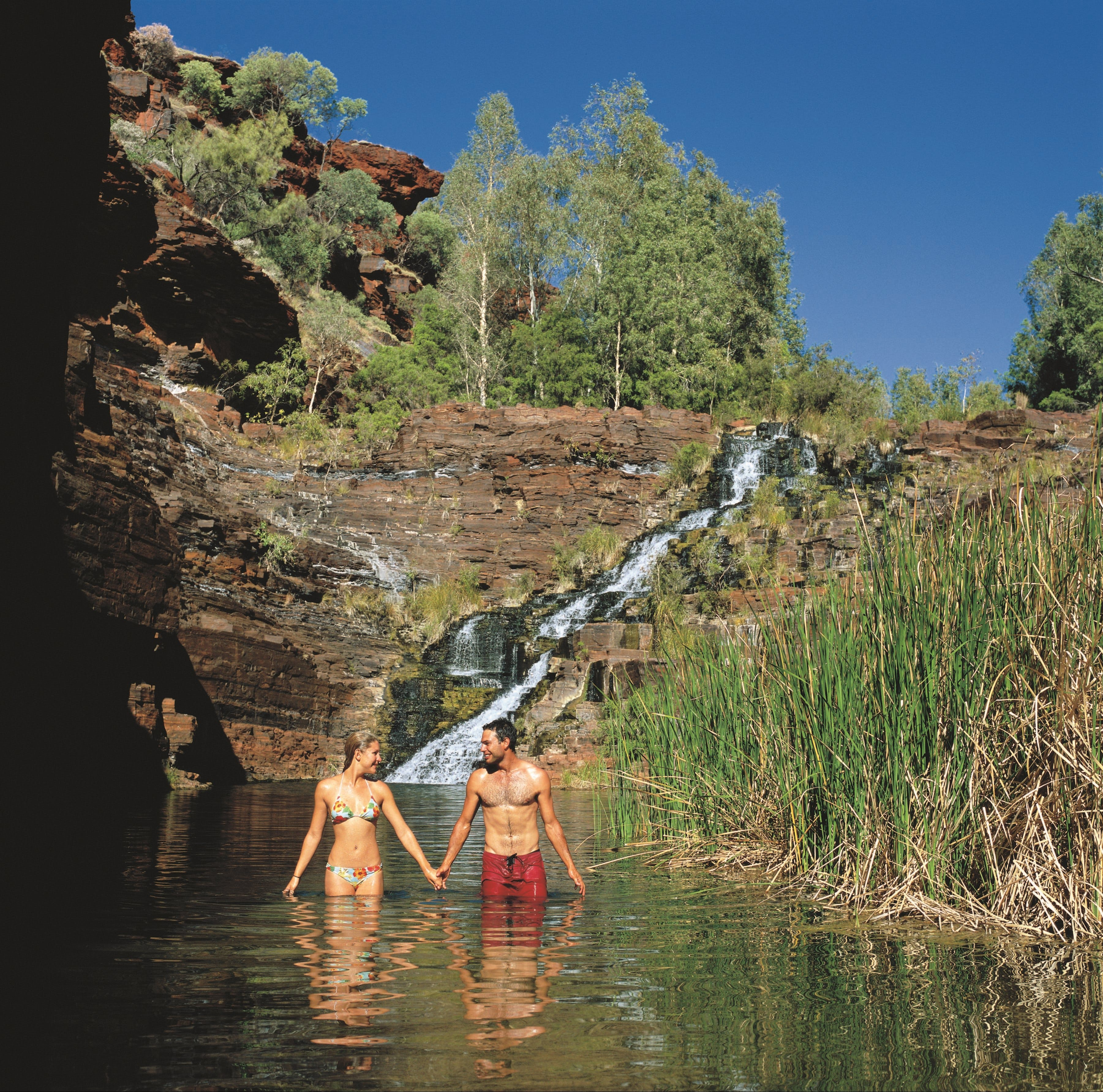 Fortescue Falls - Accommodation QLD