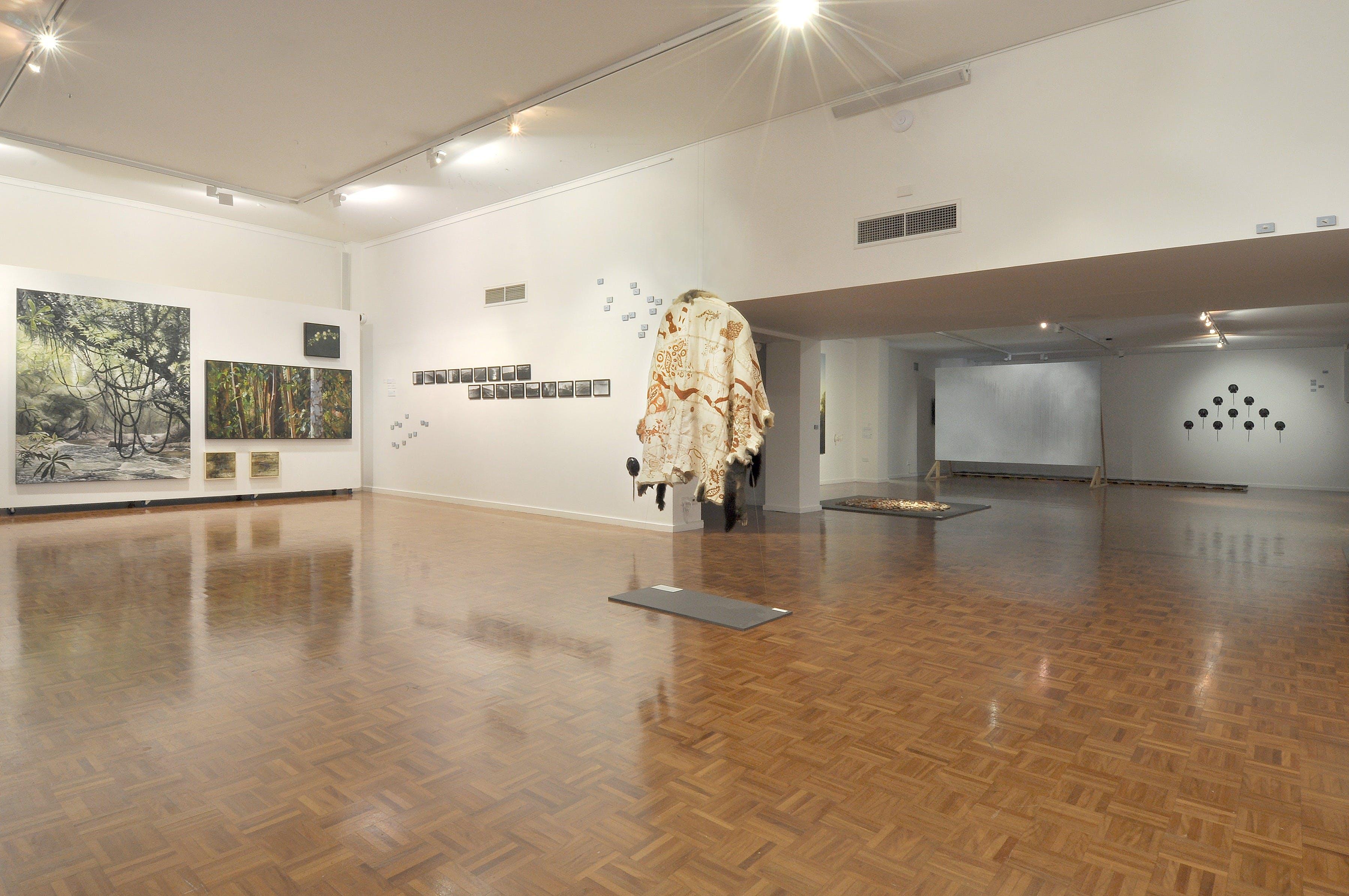 Noosa Regional Gallery - Accommodation QLD