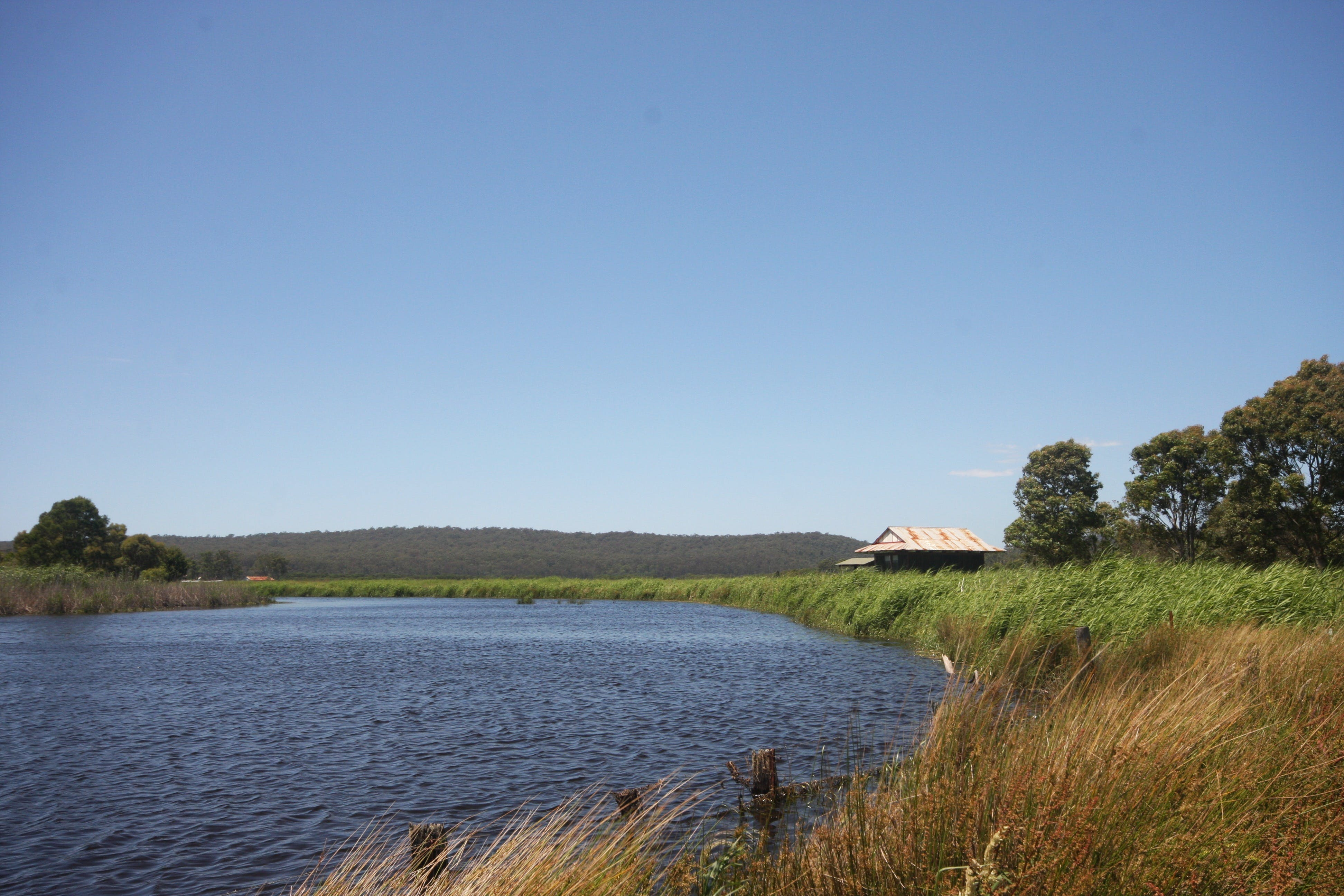 Panboola Wetlands - Accommodation QLD