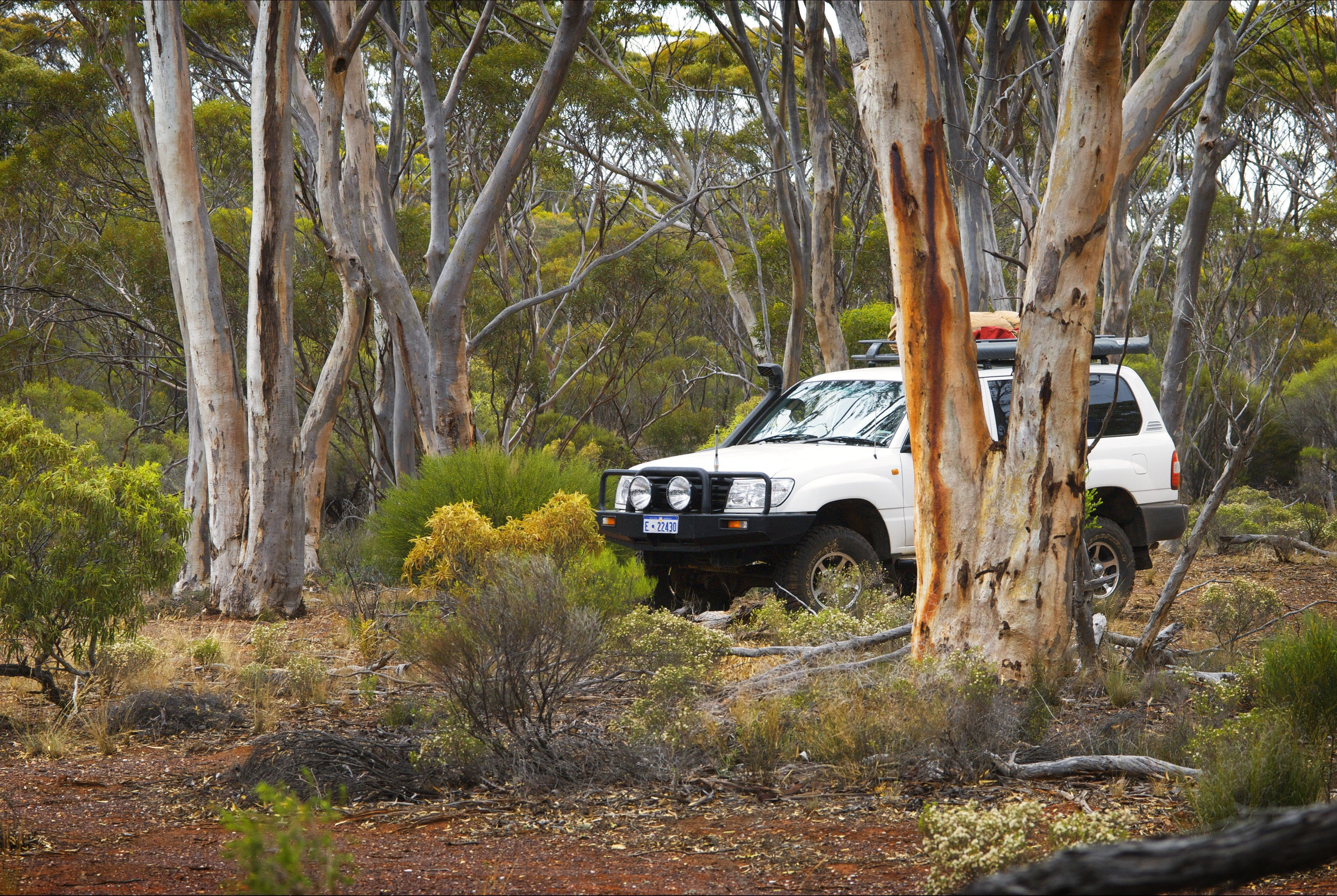 Ravensthorpe Range - Accommodation QLD