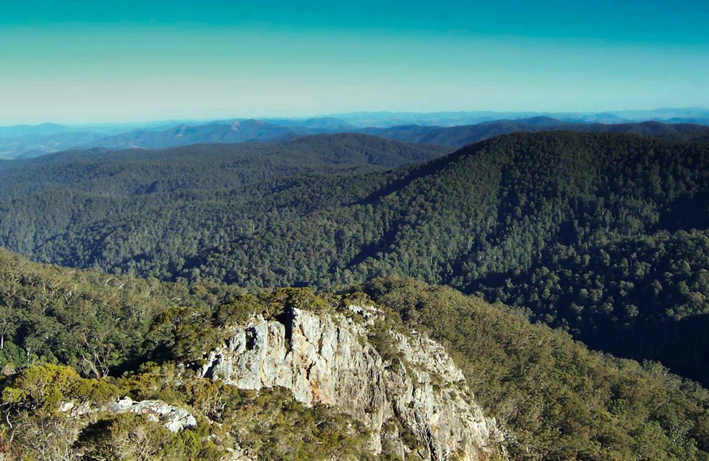 Tapin Tops National Park - Accommodation QLD