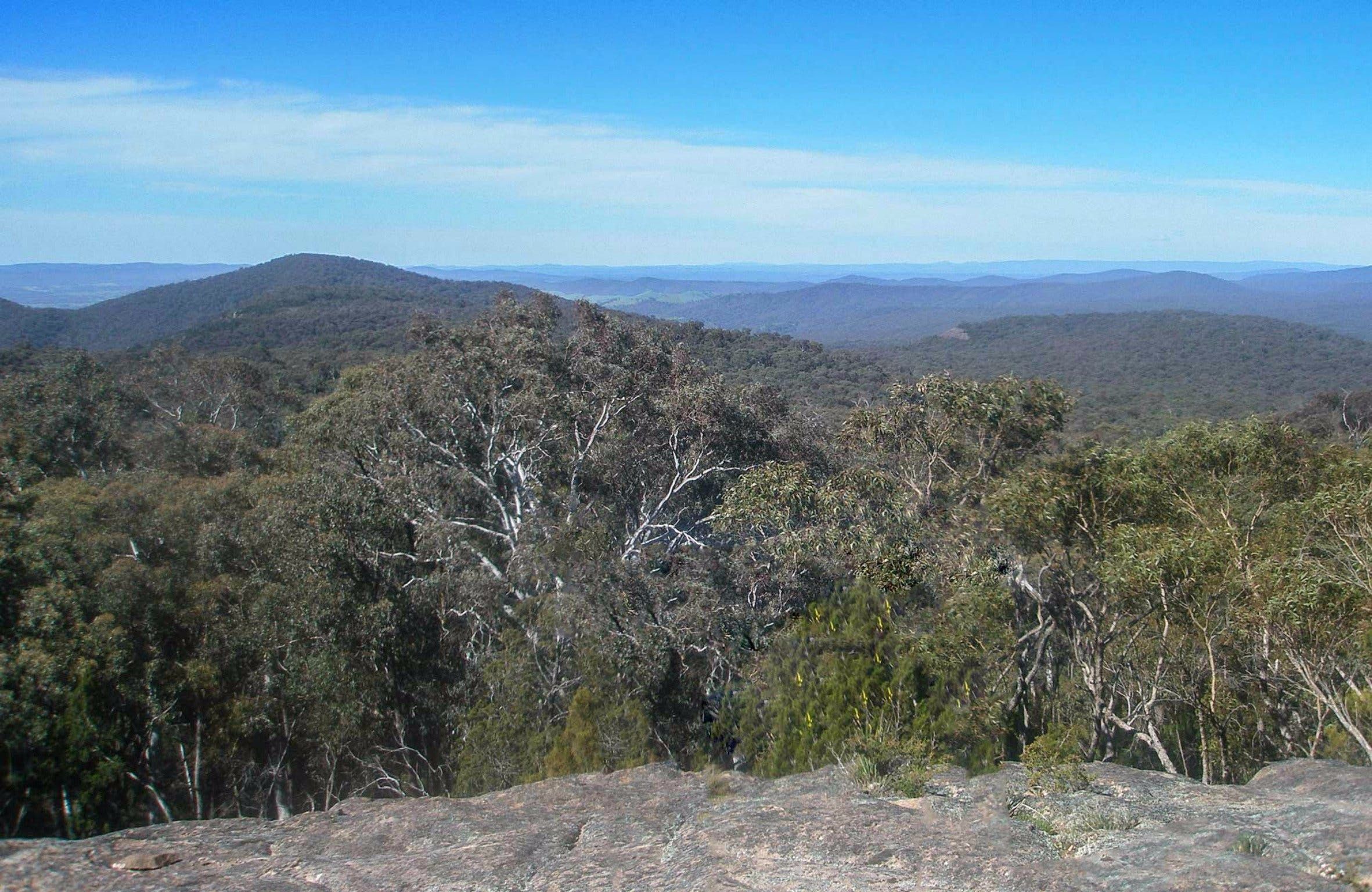 Woomargama National Park - Accommodation QLD