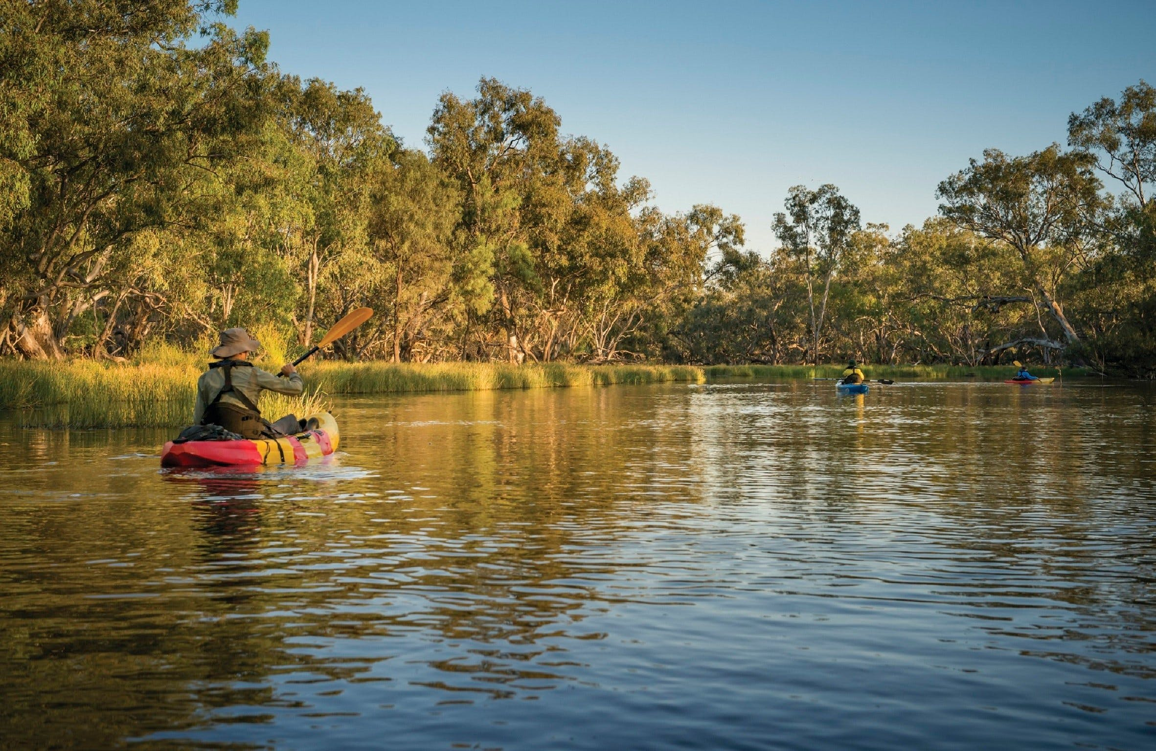 Macquarie Marshes Nature Reserve - Accommodation QLD