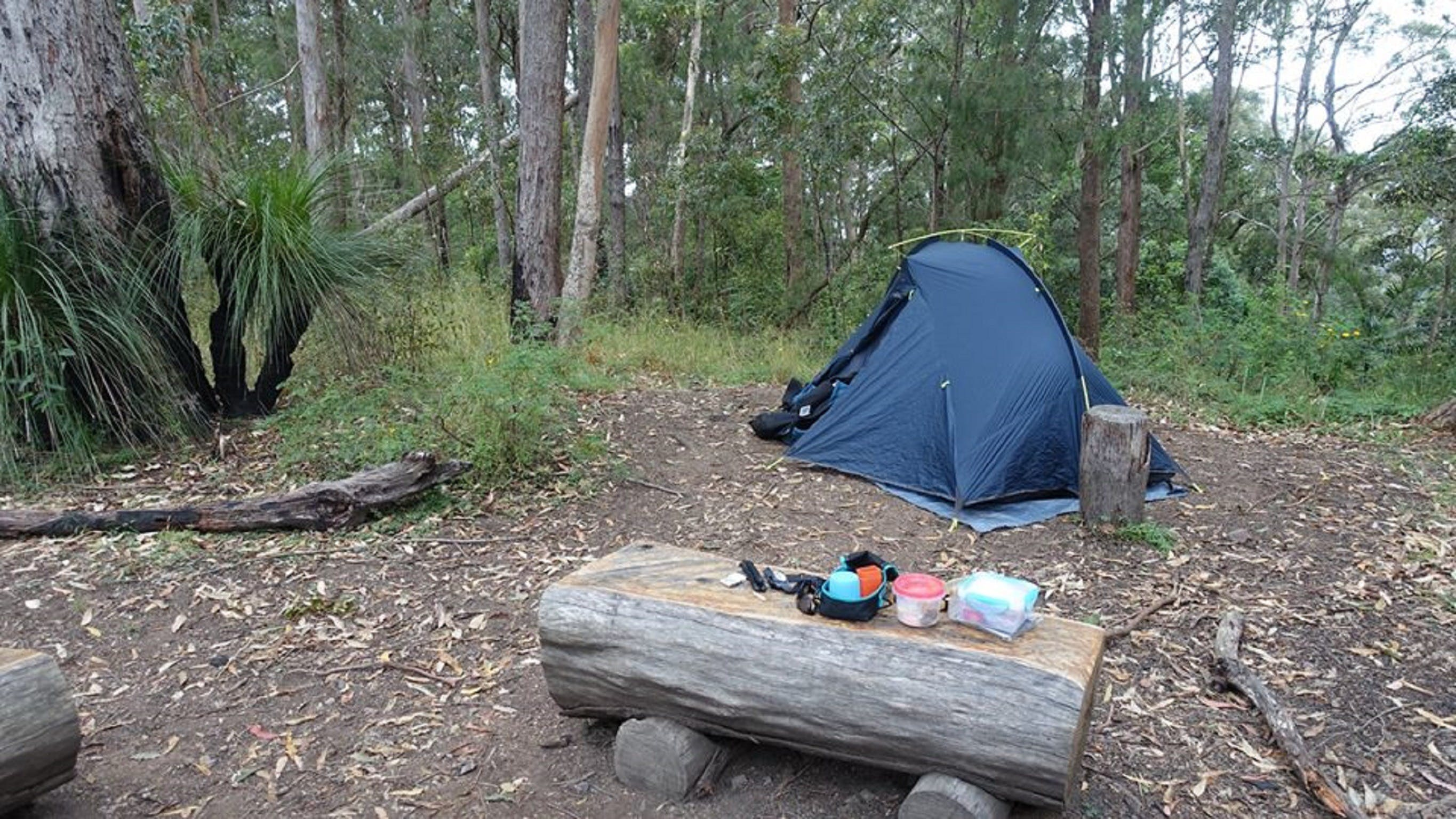 Northbrook Mountain Bush Camp - Accommodation QLD