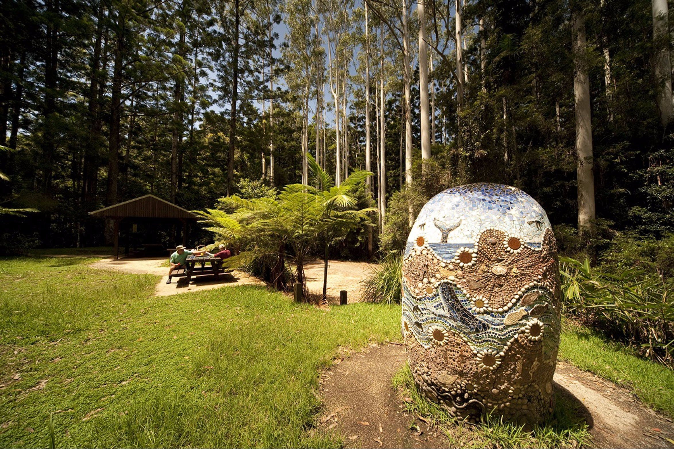 The Pines Picnic Area - Accommodation QLD