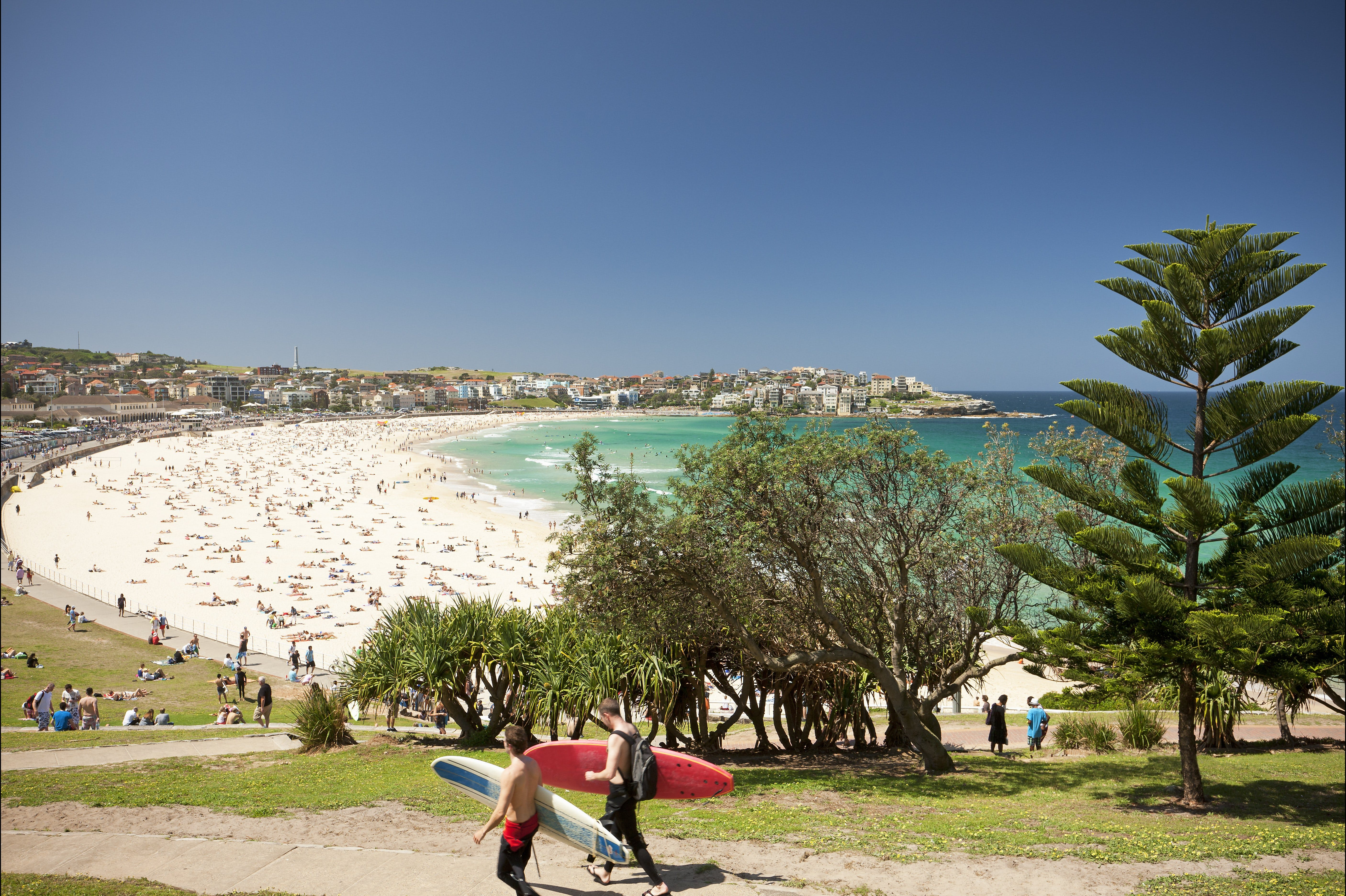 Bondi to Coogee Coastal Walk - Accommodation QLD