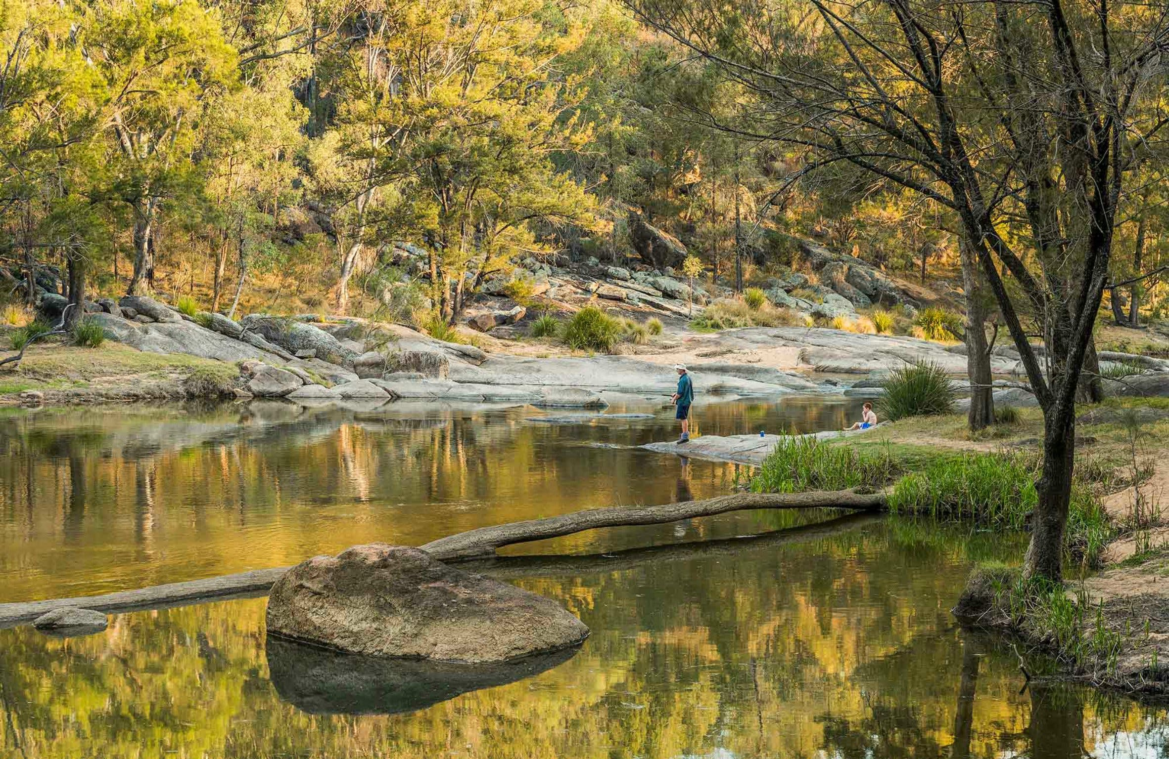 Warrabah National Park - Accommodation QLD