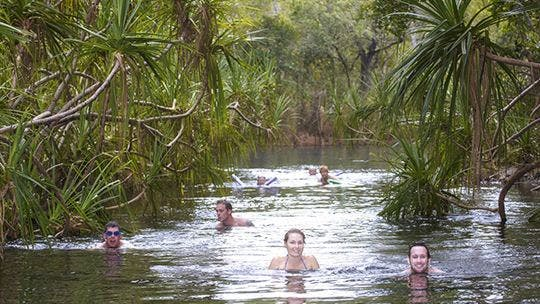 Berry Springs - Accommodation QLD