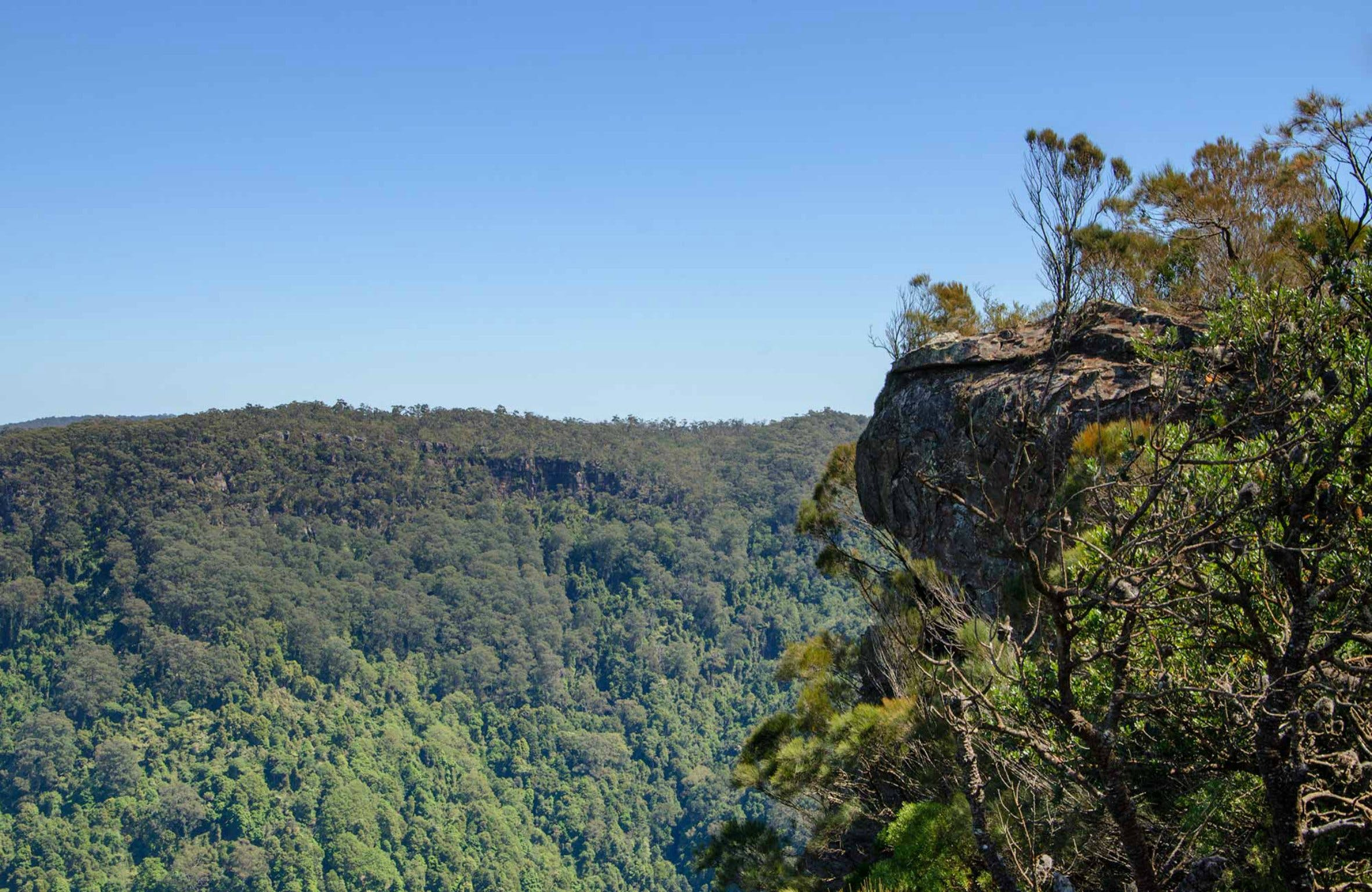Cooks Nose Walking Track - Accommodation QLD