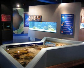 Marine and Freshwater Discovery Centre - Accommodation QLD