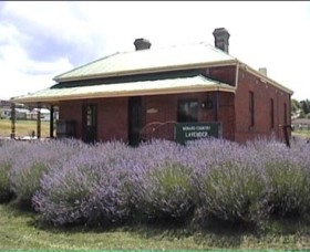 Lavender House in Railway Park - Accommodation QLD
