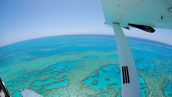 Air Whitsunday Day Tours - Accommodation QLD