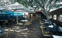 Woolwich Pier Hotel - Accommodation QLD