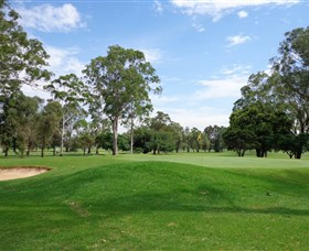 Singleton Golf Club - Accommodation QLD