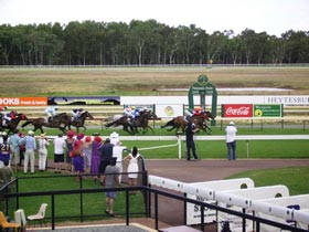 Pinjarra Race Club - Accommodation QLD