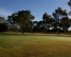 Winchelsea Golf Club - Accommodation QLD