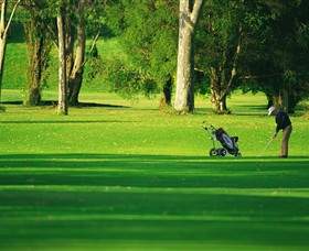 Foster Golf Club - Accommodation QLD