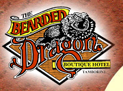 The Bearded Dragon Hotel