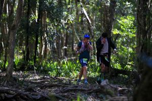 Elephant Trail Race - Accommodation QLD