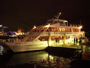 Halloween Party Cruise - Accommodation QLD