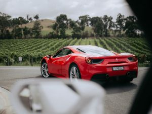 The Prancing Horse Supercar Drive Day Experience - Melbourne Yarra Valley - Accommodation QLD