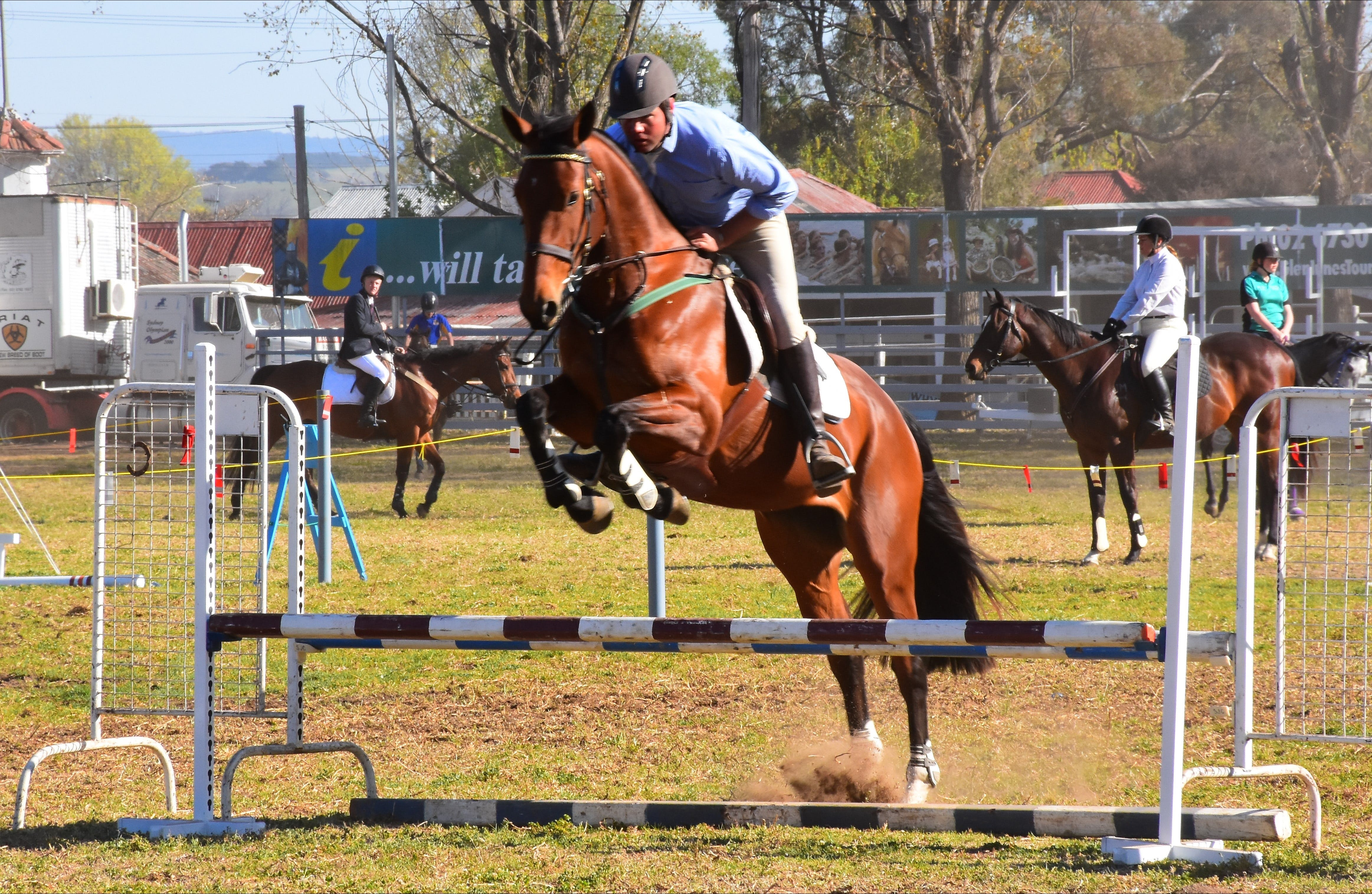 Glen Innes Pastoral and Agricultural Show - Accommodation QLD