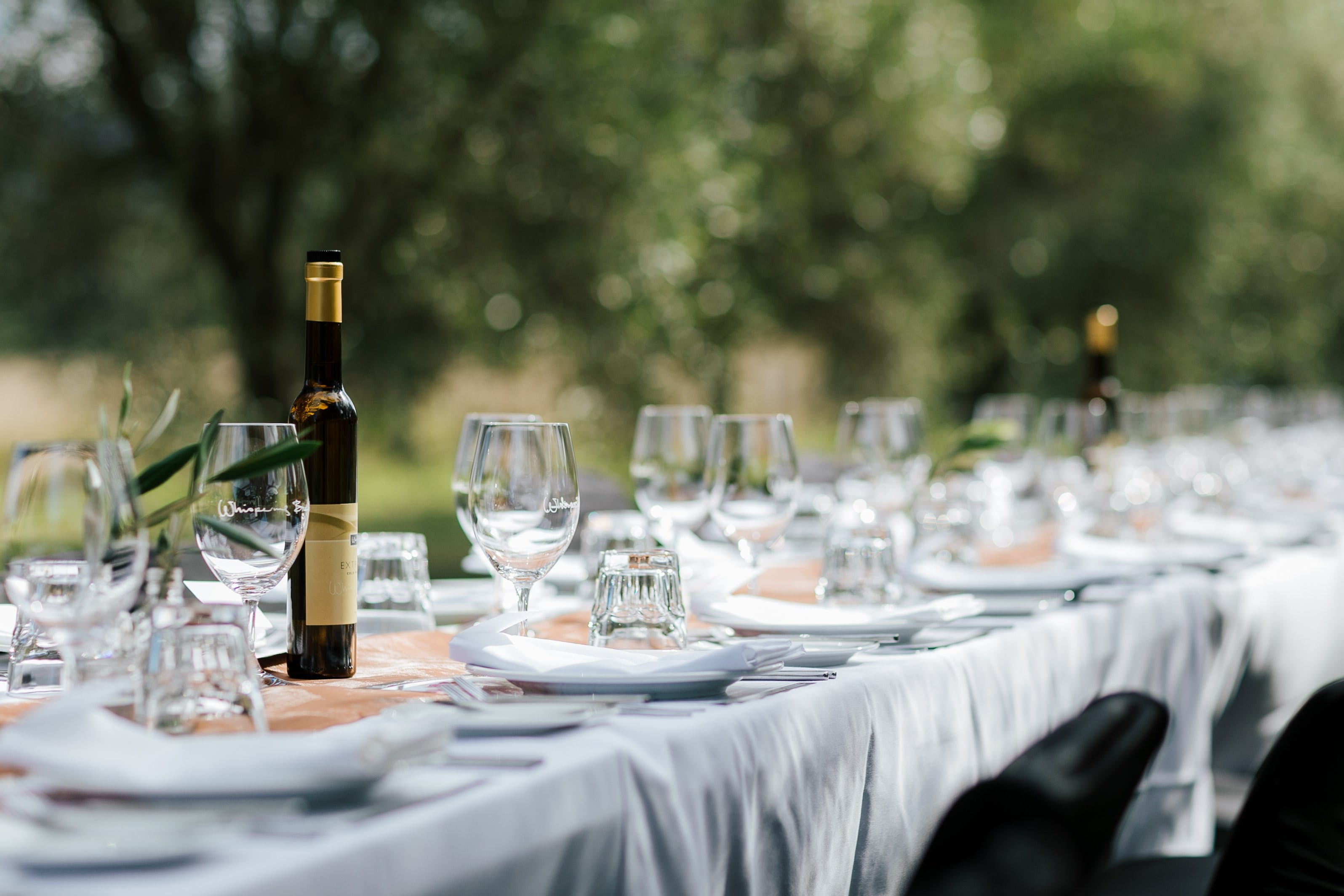 Whispering Brook Olive Long Table Luncheon - Accommodation QLD