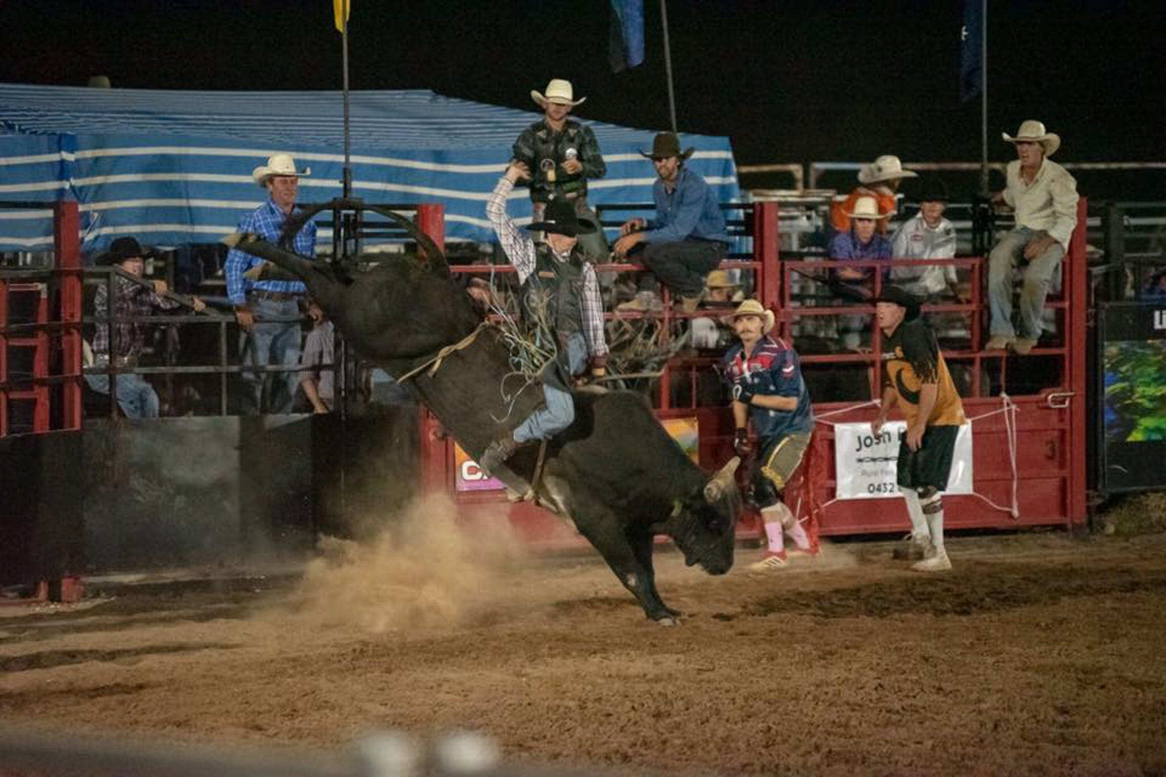 Black Opal Bull and Bronc Ride - Accommodation QLD