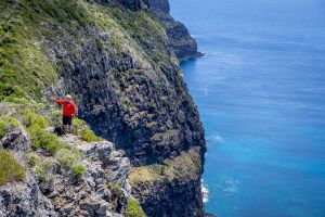 Seven Peaks Walk at Pinetrees Lord Howe Island - Accommodation QLD
