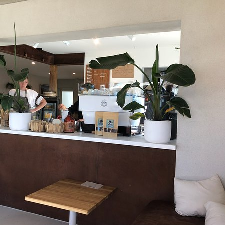 Wild Orchid Cafe - Accommodation QLD