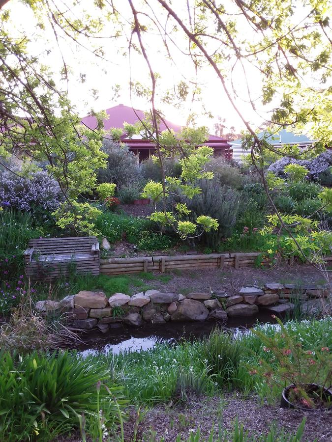 Frog Song at Willunga - Accommodation QLD