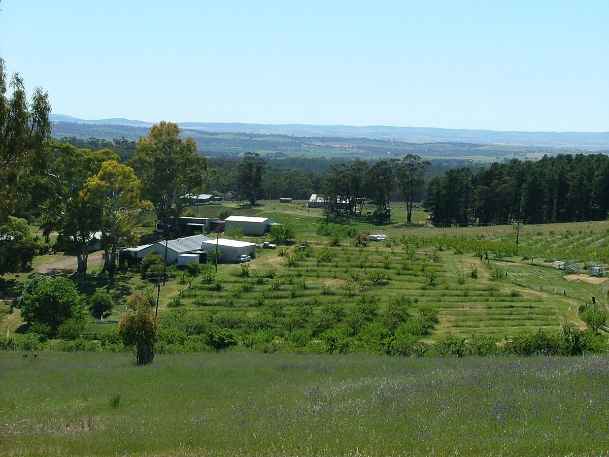 Taralee Orchards - Accommodation QLD