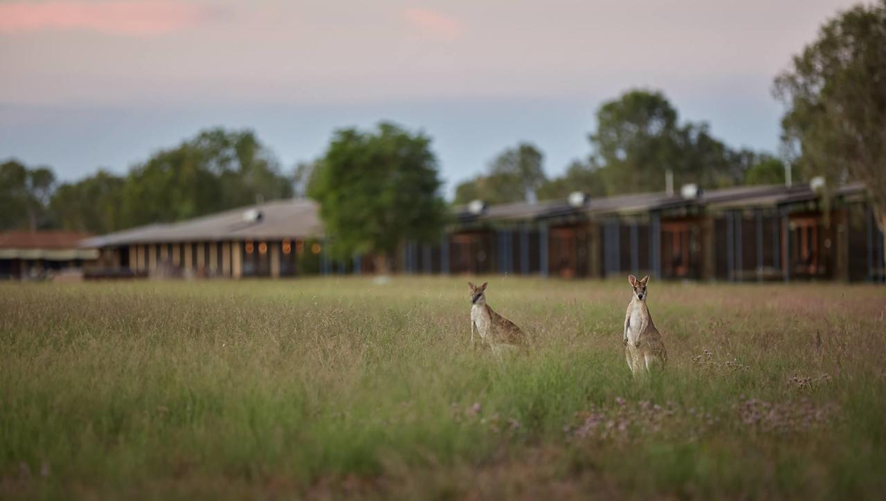Wildman Wilderness Lodge - Accommodation QLD