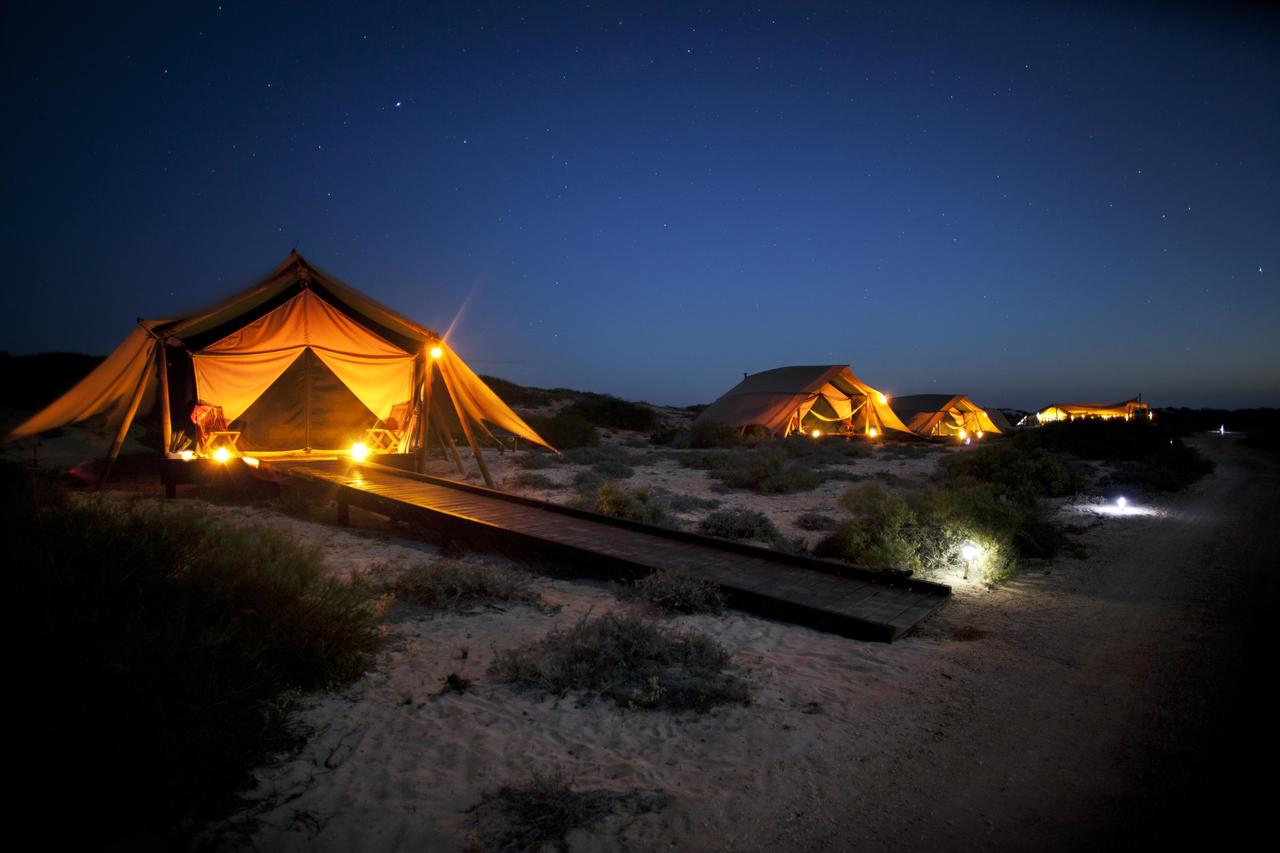 Sal Salis Ningaloo Reef - Accommodation QLD
